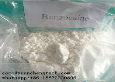 Trung Quốc CAS 94-09-7 Local Anesthetic Drugs Benzocaine Powder High Purity GMP ISO Certification nhà cung cấp