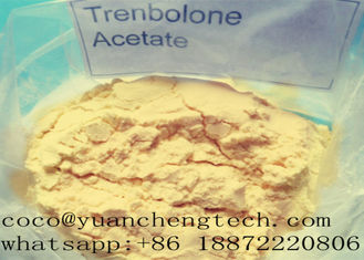 Trung Quốc Tren A Revalor -H Finaplix Trenbolone Acetate Steroid Nguyên Steroid Anabolic Hormone Bột nhà cung cấp