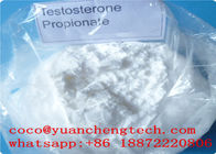 Bột màu trắng Testosterone Propionate Steroids Hormone Injectable cho xây dựng cơ thể