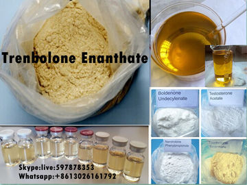 Trung Quốc Yellow Steroid Powder Trenbolone Enanthate for Bodybuilding with Good Quality nhà phân phối
