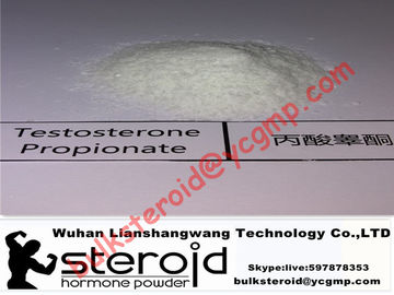 Trung Quốc Positive Testosterone Steroids Powder Testosterone Propionate Without Side Effects nhà phân phối