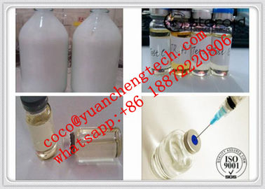 Trung Quốc Testosterone Suspension100 Water Based Steroids Test Suspension 100mg/Ml Tne Suspension nhà máy sản xuất