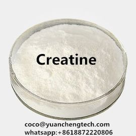 Trung Quốc Occurring Amino Acid Muscle Fitness Supplements White Powder Creatine To Gain Muscle Mass nhà phân phối